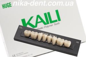 Зуби Kaili жувальні